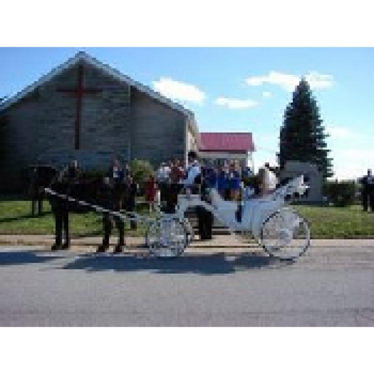 Carriage,Wagon & Pony Rides
