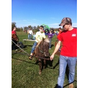 5a52578ea4a1391a0c6efa9b4f04f6c9 Pony or Donkey Rides