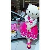 e6e67b93bdab1cb5b2278d237752d54b Hello Kitten